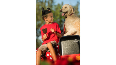 Dogs Welcome at Walt Disney World Select Resorts