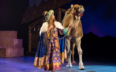 Extend Your Fun during the Three Kings Day Celebration at SeaWorld