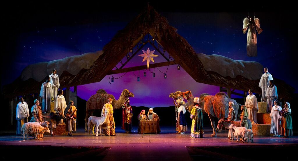 SeaWorld Extends The Holiday Season with New Latin-Inspired Event