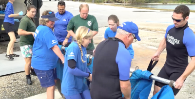 SeaWorld Orlando and Jacksonville Zoo Return Two Rehabilitated Manatees