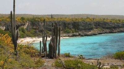 Adventures in Bonaire with Disney Cruise Line
