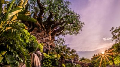 Disney's Animal Kingdom Marks 20th Anniversary With A 'Party For the Planet'
