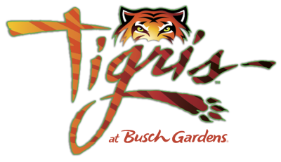 Busch Gardens Tampa Announces New Multi-Launch Thrill Coaster 'Tigris'