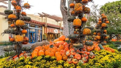 Autumn in Downtown Disney District at Disneyland Resort