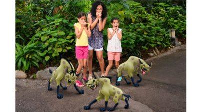 Magic Shots at Disney's Animal Kingdom