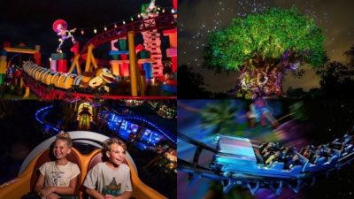 Disney After Hours Expand to Disney's Hollywood Studios & Disney's Animal Kingdom
