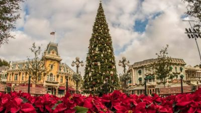 Trimming the Christmas Tree at Disneyland Park Video