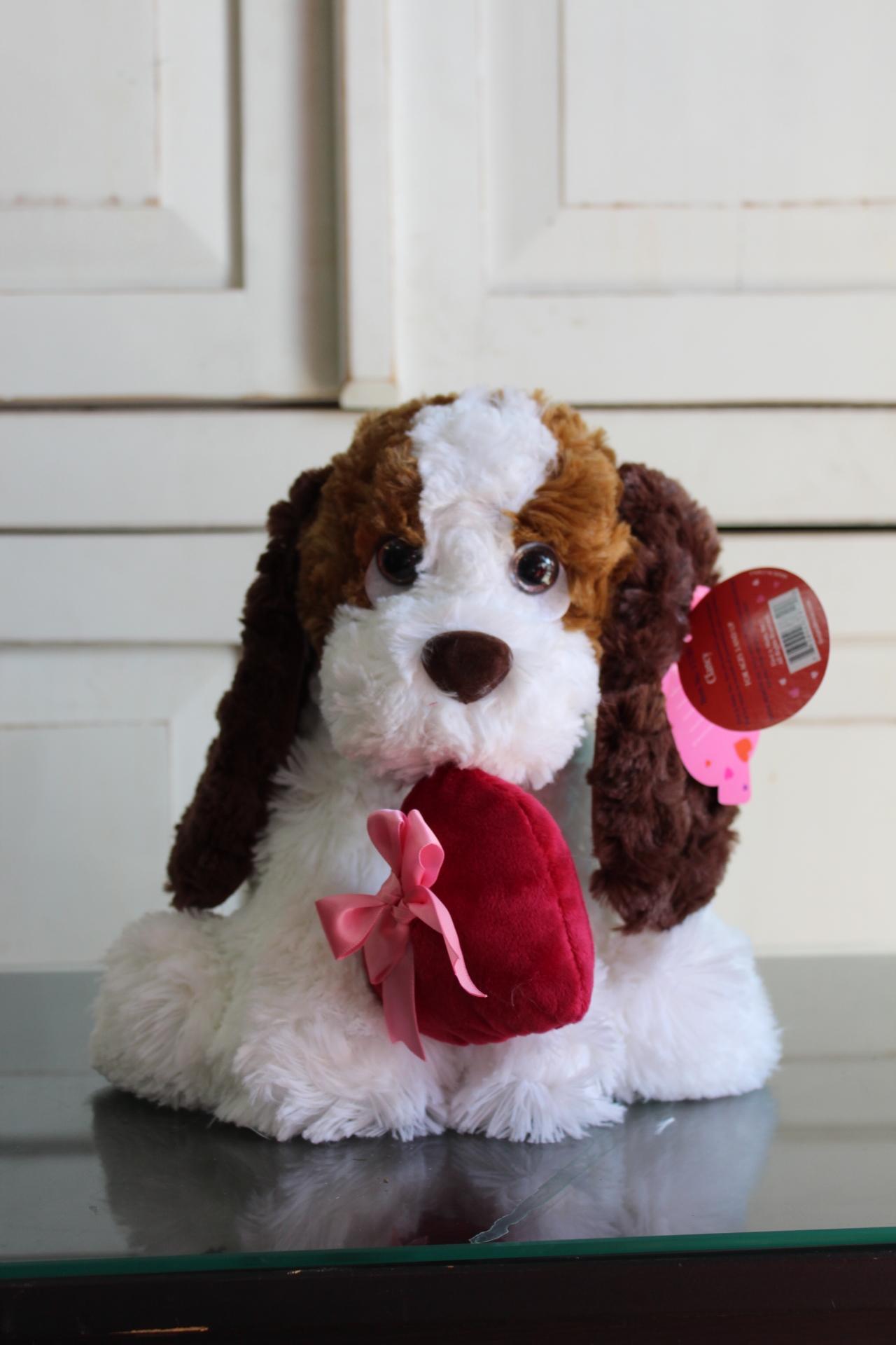 Puppy. $30.00