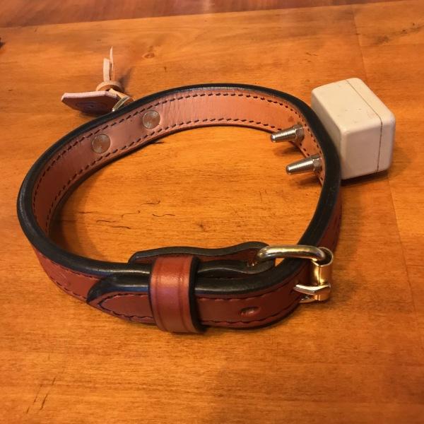 Electronic Fence Dog Collar