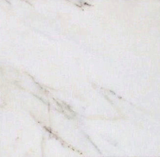"Calacatta Gold Special 12"" x 12"" Tile :  Polished & Honed"