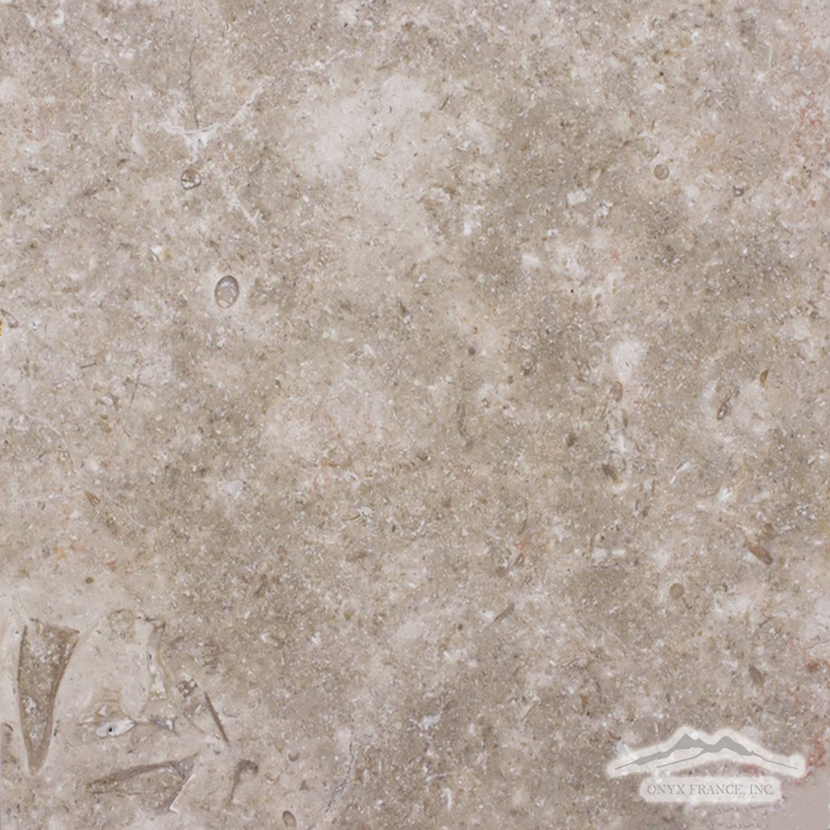 "Jerusalem Grey Limestone 12"" x 12"" Tile Honed"