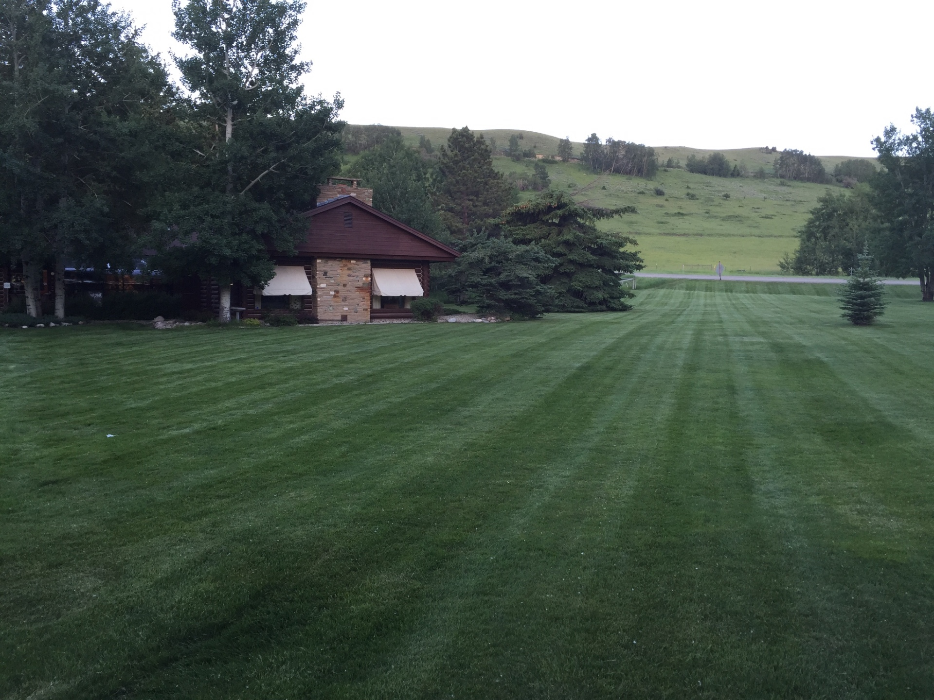 mowing, red lodge, procut