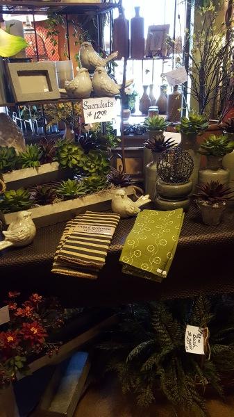 22) Succulent Display