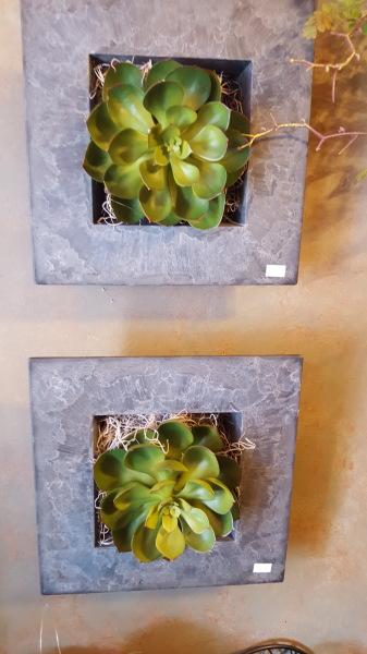 13) Succulent Wall Decor