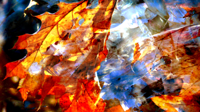 fusion photo of leaves and abstract painting