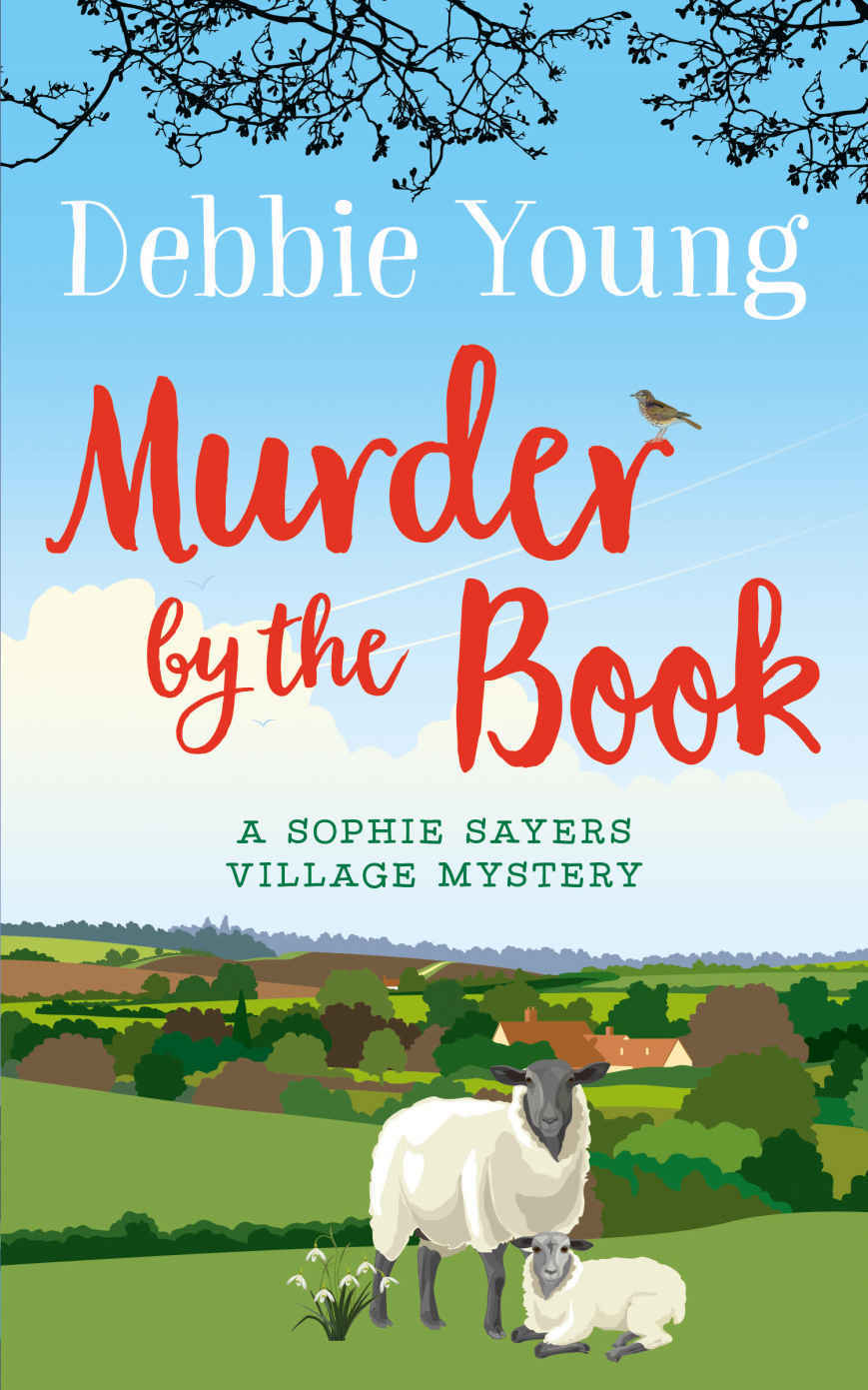 Review - Murder by The Book by Debbie Young