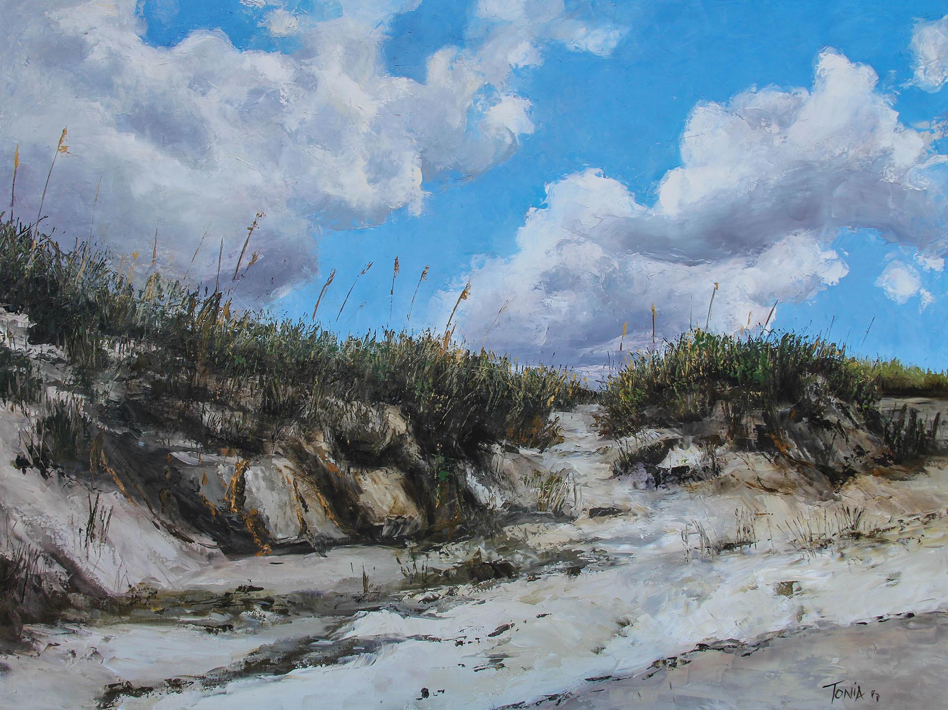 Sand Dunes at Bird Shoal