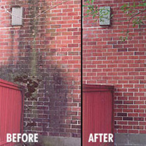 Brick Cleaning and Restoration, by MKE Property Detailing