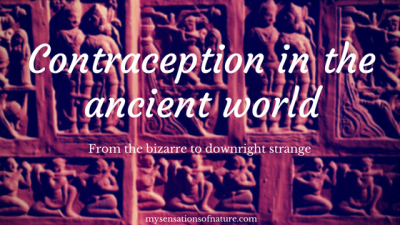 Contraception in the ancient world... From the bizarre to downright strange