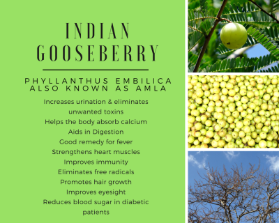 Amla, Indian Gooseberry, Benefits of Indian Gooseberry, Nature's remedies