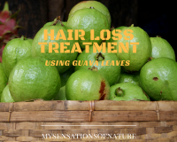 natural hair loss treatment, guava leaves, natural remedies, fuller hair, stronger hair, alternative remedies