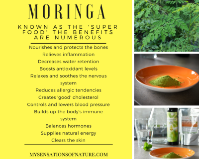 numerous benefits of moringa, super food, moringa oleifera, natural remedies, nature's medicine, alternative remedies