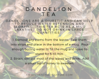 water retention, dandelion tea, bloating, natural remedies, remedies against water retention