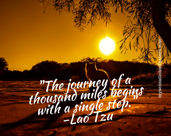 take the step, faith, have faith in yourself, motivation, inspirational, quotes, Lau Tzu