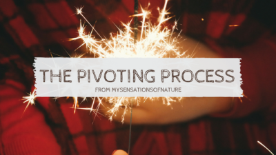 The Pivoting process that intrigued me