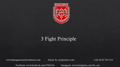 3 Fight Principle