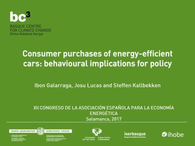 Spanish Association of Energy Economics - Presentation (BC3)