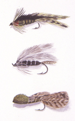 watercolor, fishing fly painting, realism, flies, realistic, photo realism, fly painting