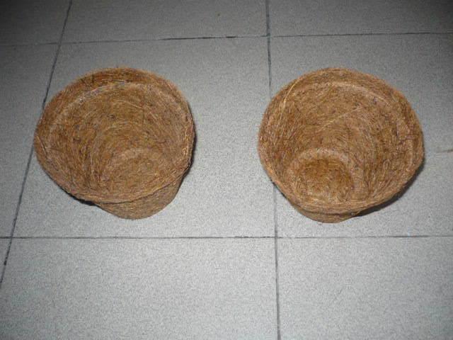 Coir Pots