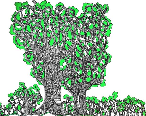 Marilyn Nash original print black & white & green trees titled Reaching for the Sky