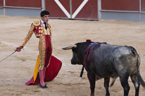 The Truth About Bullfighting