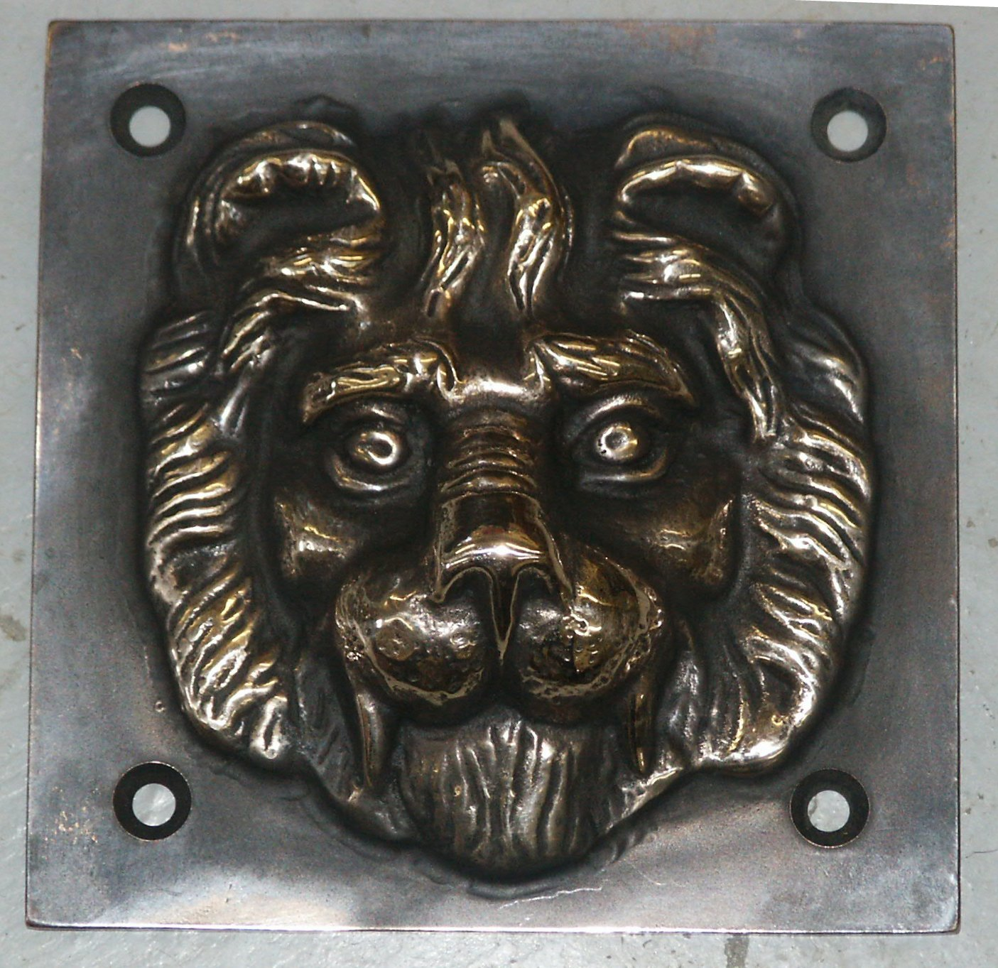 Lion Head on Square Plate