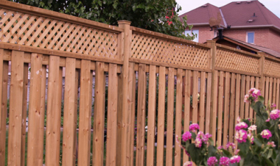 Fence TFC-02