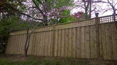 Fence TFC-16