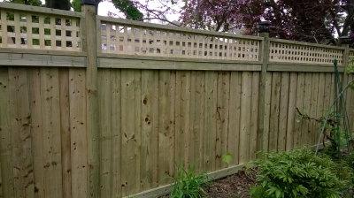 Fence TFC-17