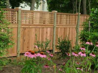 Fence TFC-20