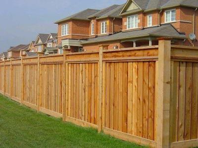 Fence TF-01