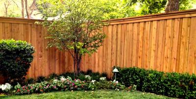 Fence TF-06