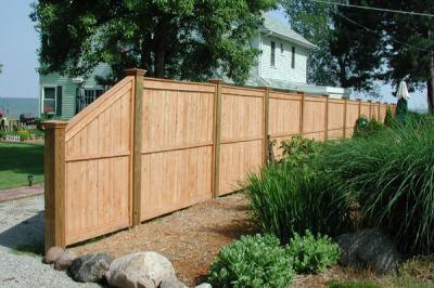 Fence TF-10