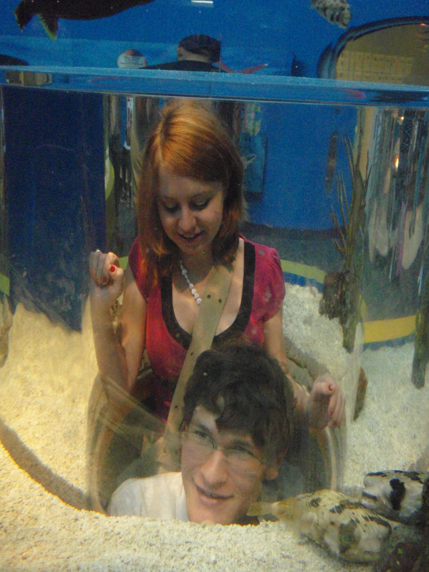 2008 - Ripley's Aquarium, TN