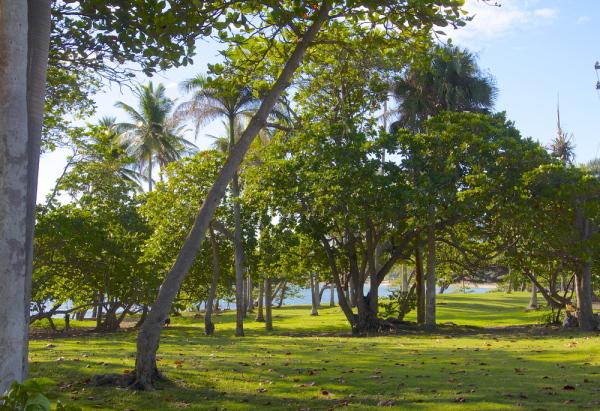Cofresi Park