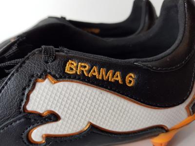 Wout Brama - 2011/2012