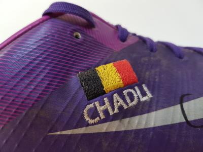 Nacer Chadli - 2011/2012