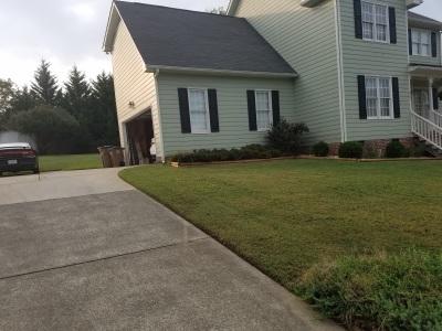 Clean Grass Edge