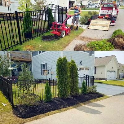 Symmetrical Planting