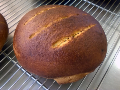 Honey wheat rustic bread